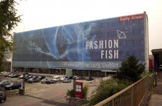 Fashion-Fish